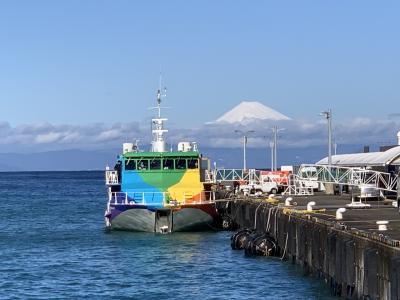 30年ぶりの大島へ