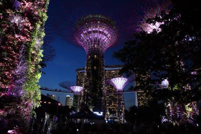 ビジネスで行くシンガポール / ビンタン島(インドネシア)/ タイガービール工場 / チリクラブ