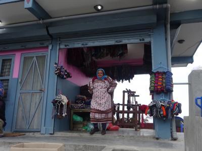 ネパール わくわくドキドキ旅 (3)ナガルコット~帰国編