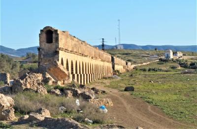 チュニジア周遊とジェルバ島(8)----ケルクアンとバルドー博物館とチュニス近郊