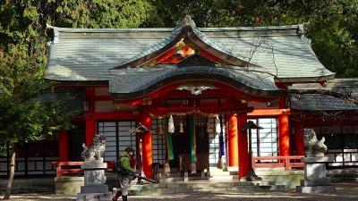 伊丹市荒牧から川西池田駅まで歩き、伊丹駅経由帰宅しました その3。