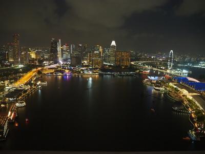 2019~2020年 年末年始の旅  ⑦初めてのシンガポール マリーナ沿いの夜景を満喫!アラブストリートやフォトジェニックな街カトンへも!!