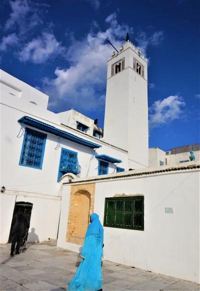 チュニジア周遊とジェルバ島(9)----カルタゴとシディ・ブ・サイド