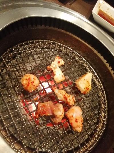 大阪格安旅行1泊2日!新幹線と1日乗り放題エンジョイエコカードとビール工場見学と焼肉とラーメン