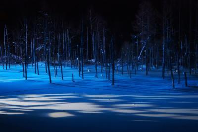 やっと行けた、夜の青い池 in 美瑛と富良野