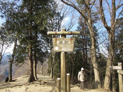 宝登山(2)登山 蝋梅を求めて