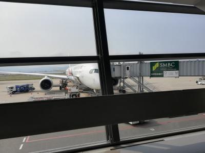 クアラルンプール旅行記 マレーシア航空エコノミークラス搭乗記 往路編