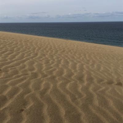 2020/1/22 - 27 広島出張終わりからの島根、鳥取旅行記 その6は鳥取砂丘です。