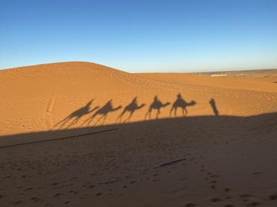 熟年夫婦の旅、初めてのアフリカ大陸 モロッコへ④サハラ砂漠編