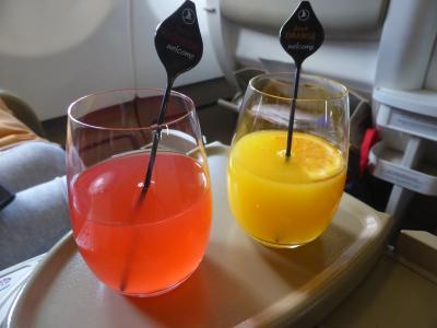 5歳娘を連れて夏休みスウェーデン・ノルウェー11日間の旅2-トルコ航空ビジネスクラス搭乗記