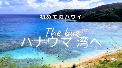 初めてのハワイ・・The Busに乗って東海岸、ハナウマ湾へ