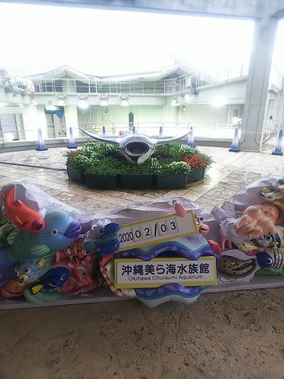 沖縄二日目。美ら海水族館。