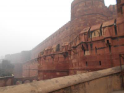 8つの世界遺産を訪れるインド5日間 6