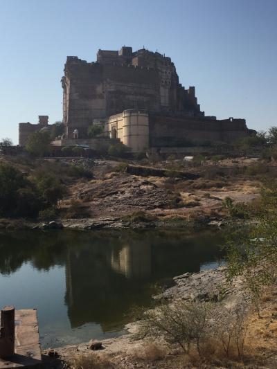 6回目の歳男、懲りなくインド一人旅で砂漠祭りと仏陀の足跡を辿る旅 Part.1