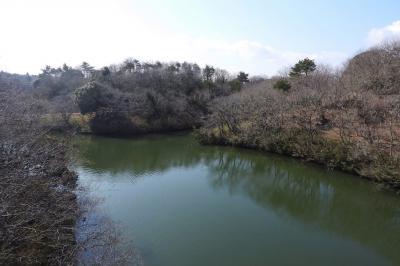 水郷県民の森でバードウォッチング [2018](3) (前編)