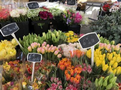 4つの南欧春祭りをめぐる9日間 7日目 ニース