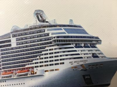 新型コロナウィルスが怖いのでキャンセルしました! 豪華客船の旅
