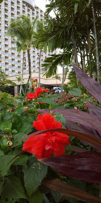 2020年 三世代グアム旅行 その⑥ ホテル編