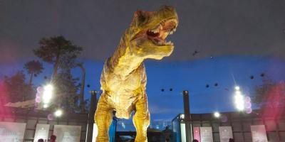 JALどこかにマイルで小松空港~加賀温泉・恐竜博物館・東尋坊~赤ちゃん連れ三世代旅行