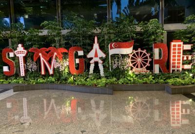 アジア3ヶ国☆4都市巡り☆ゆる~り【シンガポール1泊】⑤マイペース一人旅~☆彡
