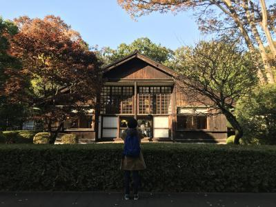 2019年11月 江戸東京たてもの園
