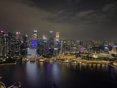 シンガポールゆるりん一人旅!その2