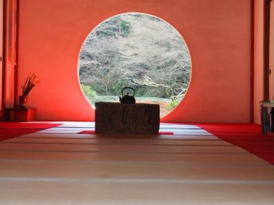 鎌倉 明月院 紫陽花・紅葉の季節を敢えて外して伺いました