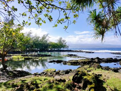 母を連れてオアフ島&ハワイ島 6泊8日★ ① 出発~ホノルル