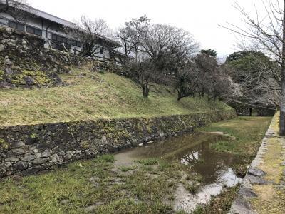 UA特典レ点飛び 沖縄、福岡旅