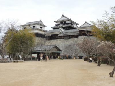 愛媛の城巡り3日間③松山城