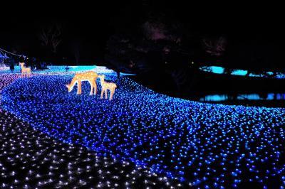 思いつきで奈良に泊まりに行って「なら瑠璃絵」見てきた話