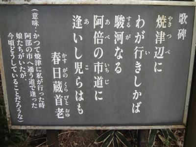 焼津花沢山縦走、国選定重要伝統的建造物群保存地区花沢の里を歩く