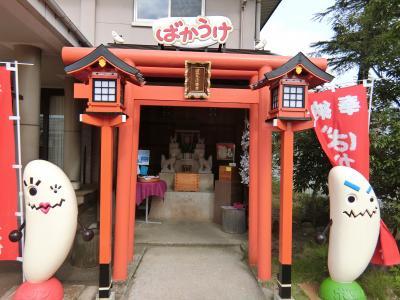 日本酒だけじゃない、ワイナリーもあるんだ。新潟のおいしいワインカーブドッチへ!③弥彦神社編