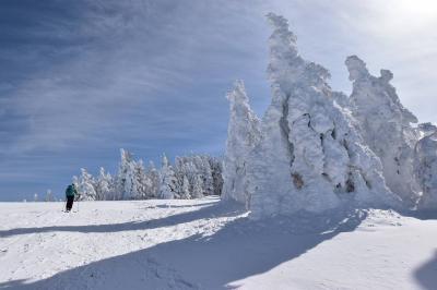 冬の根子岳 スノーシューハイク(奥ダボススキー場から)