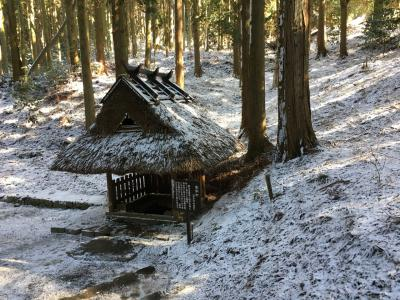 2020年西国三十三所巡礼の旅② 今冬初めて雪を見た、寒さの中お参り 24番25番と番外