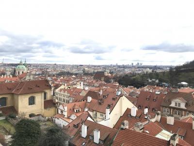 ポーランドとチェコに行ってきました