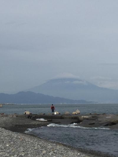 【静岡】 三保の松原・清水港・久能山東照宮へ行き、日本平ロープウェイにも乗ってみた。
