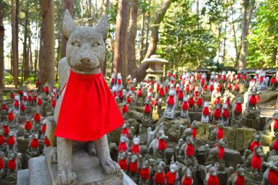 愛知・岐阜で 一の宮巡りと モーニングと 名古屋めし(とマリオット)の1泊2日、無事故で生還。