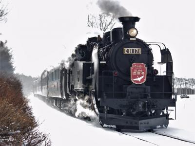 令和2年 2月4日釧網線 茅沼駅での SL冬の湿原号 と丹頂鶴 1日目