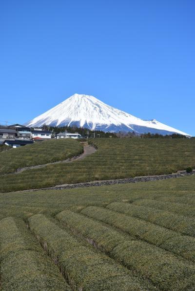 富士滞在 2月