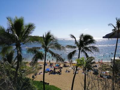 新婚旅行~初めてのハワイにて~2日目