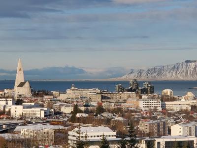アイスランドに行ってきました(6日目)