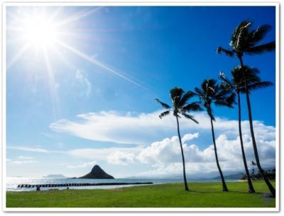 飲むままに呑むままにハワイは私を傷つけない♪ な2日目