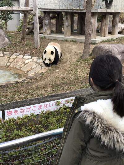 子連れ(6歳)でGo~パンダから有馬温泉へ