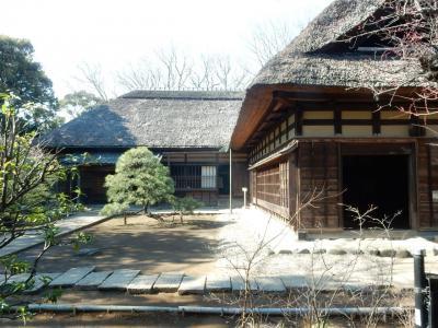 見所の少ない旅行記 東京歴史散歩 ③ 瑞江 一之江
