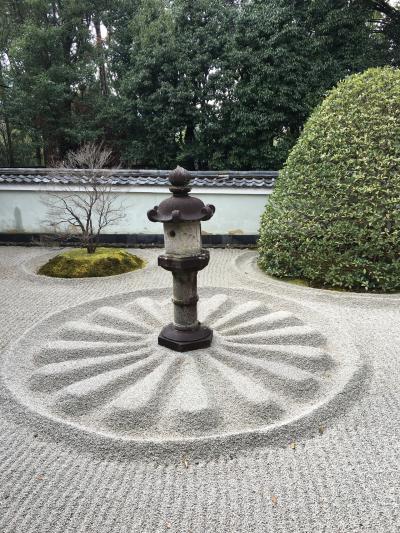 晩冬の三都旅(3)  京都編 冬の特別拝観含む