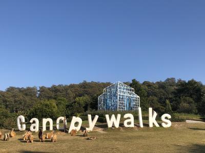タイ専科 67    メーサー シリキット王妃植物園     ~今一つ 趣向あればと 空中散歩~