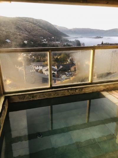そうだ温泉いこう♪芦ノ湖見ながら源泉掛け流し