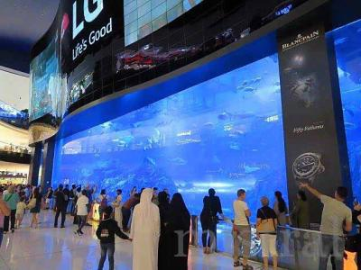 海外水族館遠征 UAE ドバイ  2 日め シャルジャ~ドバイモール編
