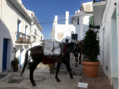 白い村フリヒリアナSlide show・・ヨーロッパ60日三ツ星ホテルの旅・・スペイン編